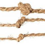 3 KIT corde en noix de coco fil en noix de coco attache arbre ficelle de jardinage ruban de jardin en fibres de noix de coco 100% en fibres naturelles (3-KIT = 1 rouleau par genre (3 x 50 m) de la marque Grosshandel & Direktimport Thekla Fuhrmann image 1 produit