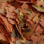 algue dans étang TOP 7 image 1 produit