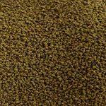 algue dans étang TOP 7 image 2 produit