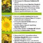 anti algues étang TOP 1 image 4 produit