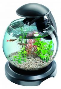 aquarium avec pompe TOP 3 image 0 produit