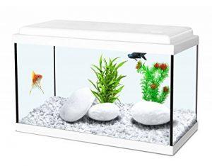 aquarium avec pompe TOP 5 image 0 produit