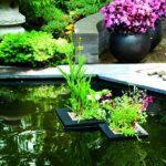 bassin carré pour poisson TOP 0 image 1 produit