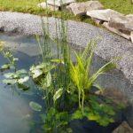 Bio Green SFG 40-500 Metropole Géotextile Noir/Blanc de la marque Bio Green image 2 produit