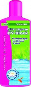 Dennerle Blue Lagoon UV-Block Traitement de l'Eau pour Bassins d'Agrément 1000 ml de la marque Dennerle image 0 produit
