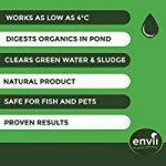 eau verte bassin poisson TOP 4 image 2 produit