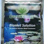 eliminer algues vertes bassin TOP 12 image 1 produit
