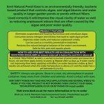 Envii Natural Pond Klear - Nettoyeur Pour Bassin Qui Élimine L'eau Verte et Traitement Qui Débarrasse Des Algues (Traite 20 000 Litres) de la marque Envii image 1 produit