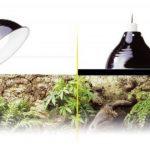 Exo Terra PT2052 Glow Light/ Reflector, Small, 14 cm de la marque Exo-terra image 1 produit