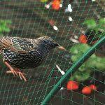 filet bassin jardin TOP 7 image 2 produit