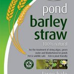 filtre naturel pour bassin poisson TOP 8 image 1 produit