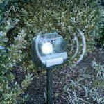 Gardigo Répulsif anti-oiseaux solaire Épouvantail électronique à ultrasons avec flash et piquet de la marque Gardigo image 3 produit