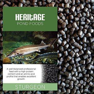 Heritage 1kg esturgeon Acipenser Ruthenus Nourriture pour poisson Pellets Premium NE coule Bassin Feed Tanche Koi 4–6mm (1KG) de la marque Heritage image 0 produit