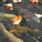 Hozelock Filet de protection pour bassin 3 x 4 m de la marque Hozelock image 1 produit