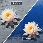 Hydra Bassin anti-algues liquide Bleu Pond Dye 250ml traite jusqu'à 1000litres de la marque HYDRA image 2 produit