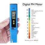 Pancellent Testeur de qualité de l'eau TDS PH 2 en 1 Set 0-9990 PPM Plage de mesure 1 PPM Résolution 2% Précision de lecture de la marque Pancellent image 4 produit
