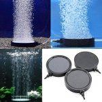 petit bassin aquatique TOP 4 image 2 produit