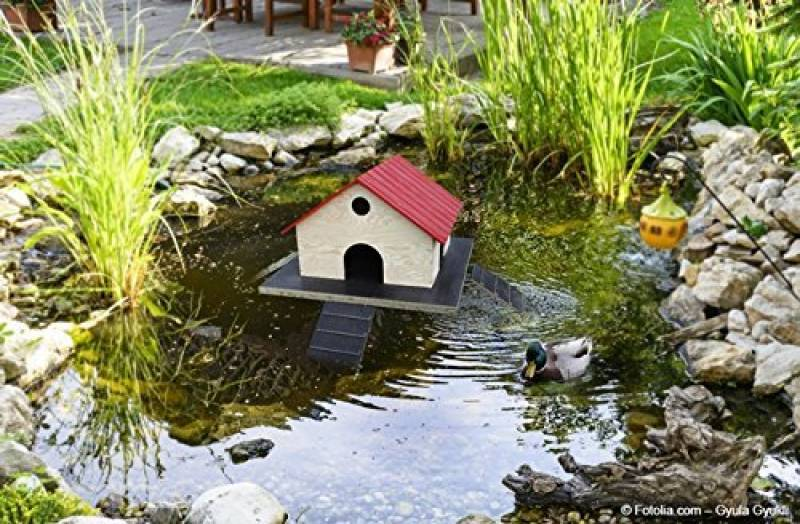 Petit bassin de jardin en bois le comparatif pour 2019 meilleur bassin d 39 agr ment - Petit bassin pour jardin ...