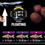 poisson bassin extérieur hiver TOP 10 image 3 produit