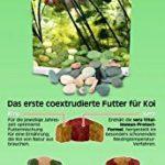 poisson carpe koi TOP 7 image 3 produit