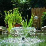 pompe de bassin oase TOP 3 image 3 produit