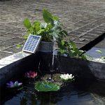 pompe pour cascade TOP 13 image 1 produit