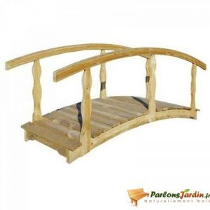 pont pour bassin de jardin TOP 1 image 0 produit