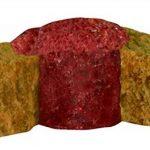 Sera Pond - Aliment Carpes Koi - Koi Professional - Composé été - 2.2 Kg de la marque SERA image 4 produit