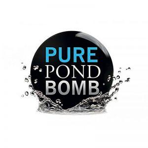 SunSun Evolution Aqua Pure Pond Bomb Ø ca. 6cm - for 20000 Liter de la marque SunSun image 0 produit
